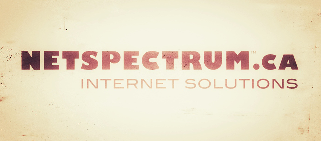 NETSPECTRUM – A Brief History