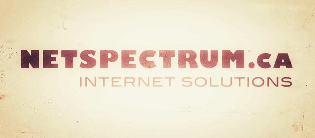 NETSPECTRUM – A Brief History