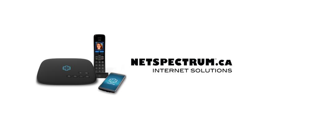 NETSPECTRUM Phone Service